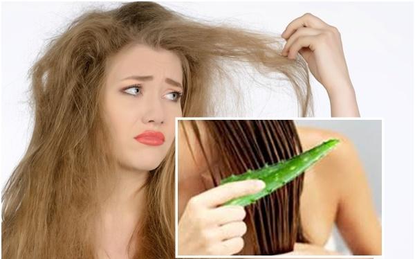 Bahan dan Cara Alami Merawat Rambut Supaya Tidak Kering 4f837eec7b