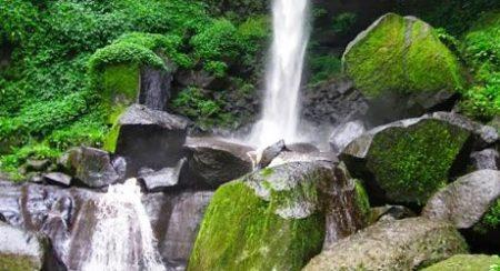 5 Lokasi Air Terjun Favorit di Pasuruan Yang Bikin Pengunjung Kangen