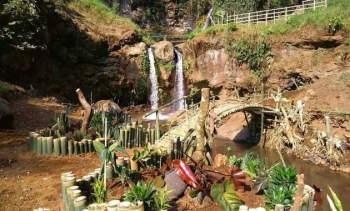Air Terjun Sumber Nyonya Pasuruan Jawa Timur
