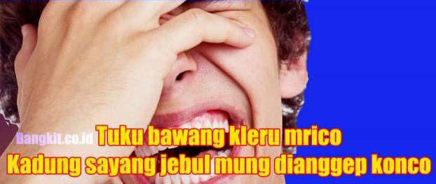 34 Status WA Bahasa Jawa – Muna-Muni Sokor Jeplak