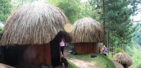 Wisata Goa Pinus Masih Sepi, Apa Yang Kurang Menarik ?