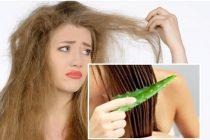 Bahan dan Cara Alami Merawat Rambut Supaya Tidak Kering