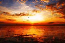 Barisan Kata Kata Sunset, Caption Singkat Menyambut Senja Hari