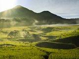 Destinasi Wisata Gunung Papandayan Selain Hutan Mati
